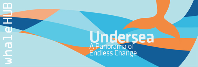 Undersea | A Panorama of Endless Change